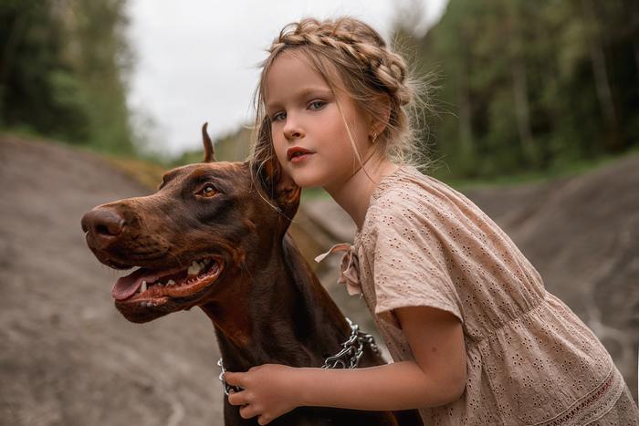 Собака каждый день следит за тем, чтобы девочка села в автобус