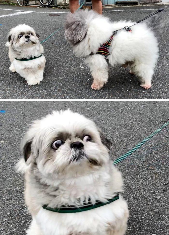 Когда на улице с тобой кто-то здоровается, а ты не можешь вспомнить, где его видел