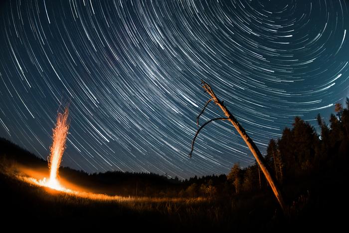 Ночь на болоте