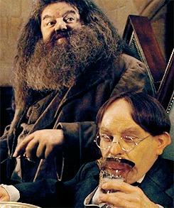 Почему профессор Флитвик так резко сменил имидж в фильмах о Гарри Поттере Одно Кино, Гарри Поттер, Видео, Гифка, Длиннопост