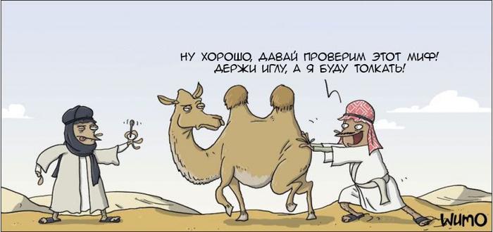 Легче верблюду пройти в игольное ушко...