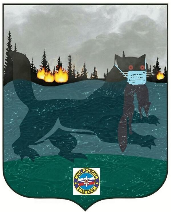 Обновлённый герб Иркутской области Землетрясение, Коронавирус, Наводнение, Пожар, Иркутск, МЧС, Гифка