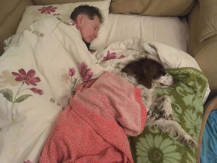 QuotПапа спит на диване на первом этаже с пожилой собакой, чтобы составить ему компанию, т.к. пёс больше не может подняться по лестницеquot
