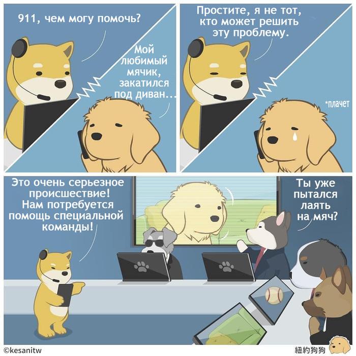 Собачья служба спасения