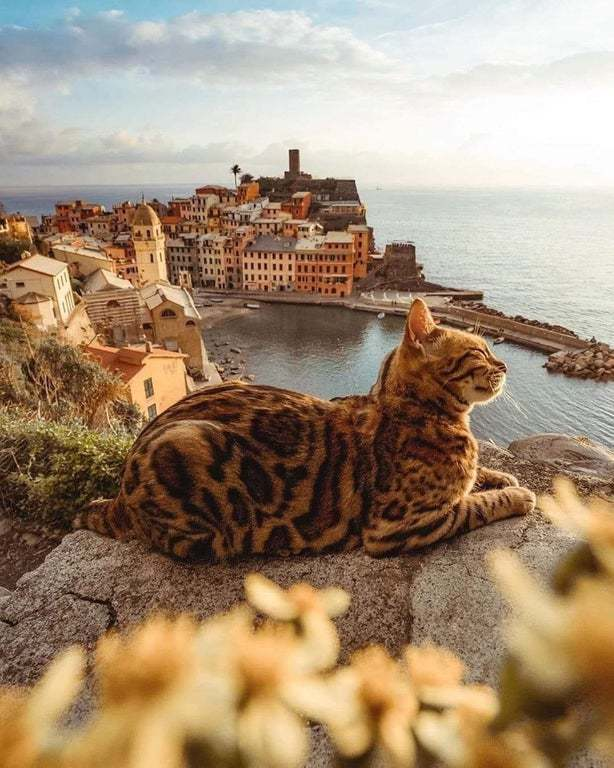 Италия прекрасна