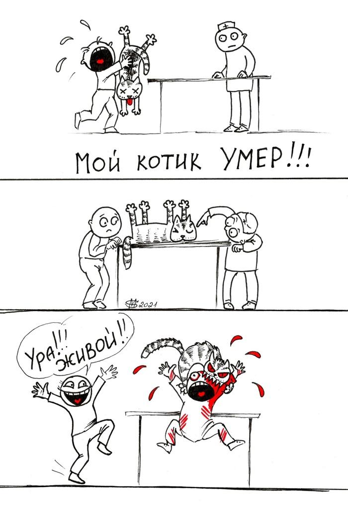 Чудеса случаются )