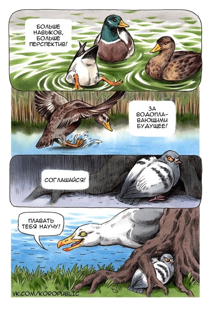 Чайка и голубь Геннадий