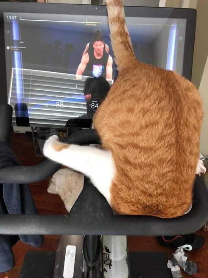Как хочу, так и смотрю телевизор
