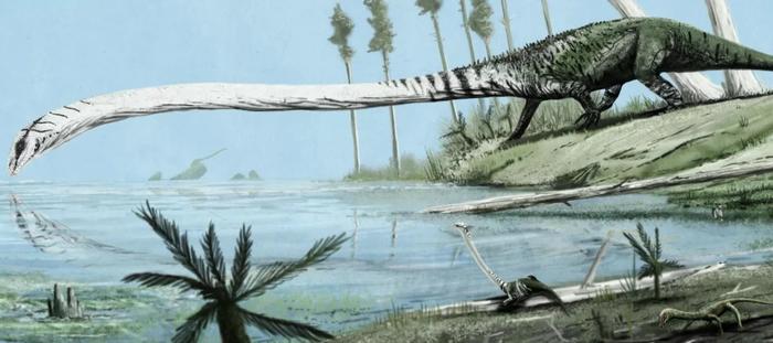 Танистрофей: Рептилия, что состоит почти из одной только шеи Животные, Динозавры, Длиннопост, Природа, Факты, Яндекс Дзен, Пресмыкающиеся, Рыба, Вода, Книга животных