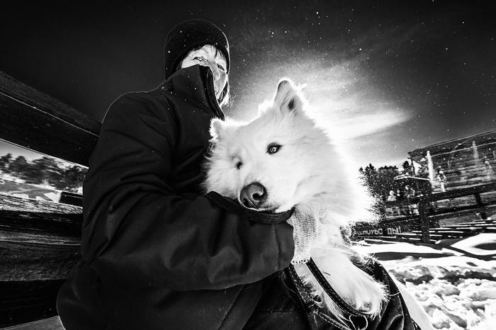 Пёс и его хозяйка