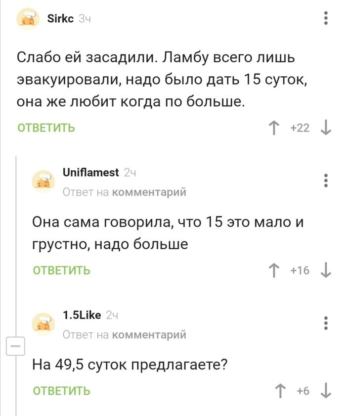 15 сантиметров (Ивлеева)