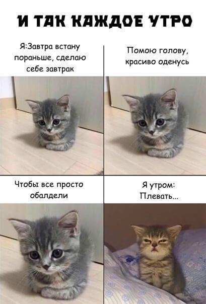 Хаха,да это же моя ЖЗНЬ)