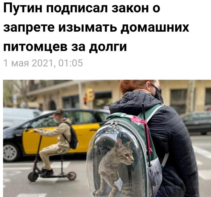 Котики спасены! Можно дальше постить)