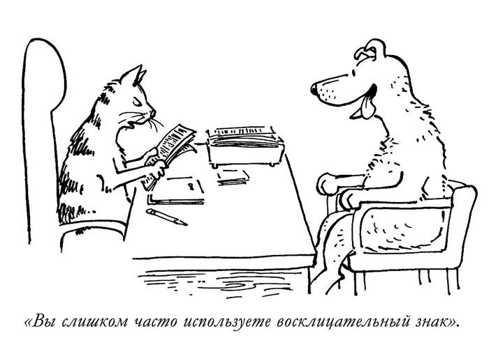 Собаки, они такие )