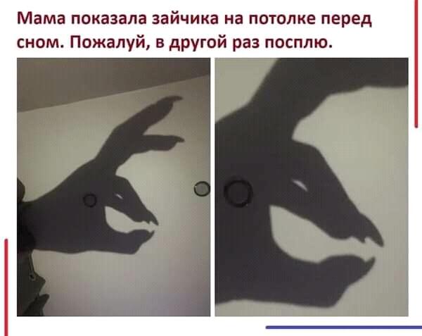 Зайчег убивайчег