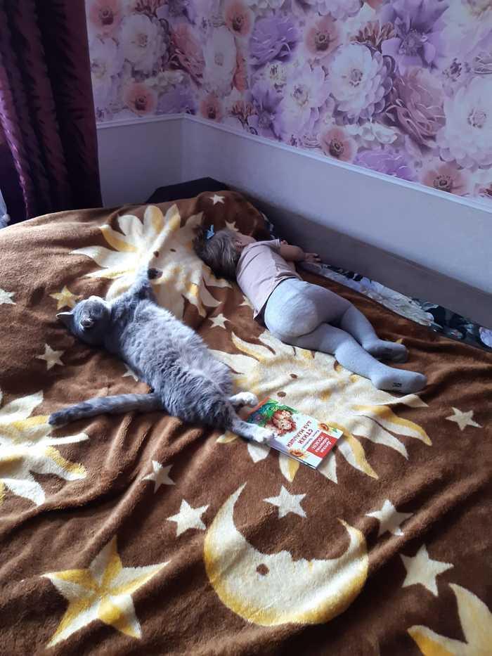 Синхронное спание