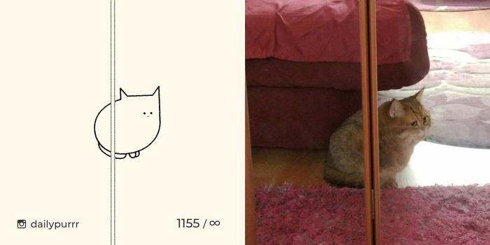 Откройте дверь, что бы получить доступ к полноразмерному коту