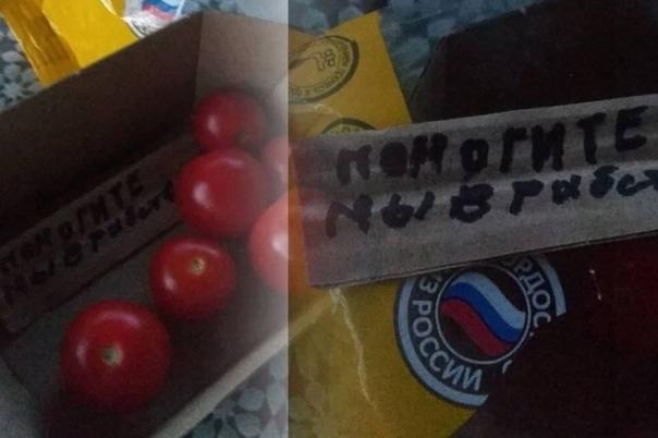 Жительница Новосибирска купила упаковку помидоров и нашла записку: «помогите мы в рабстве» Рабство, Помидоры, Новосибирск, Новости, Негатив