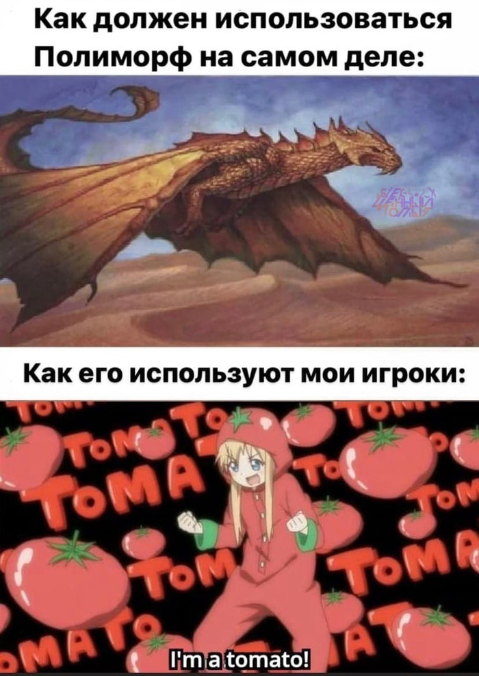 Полиморф