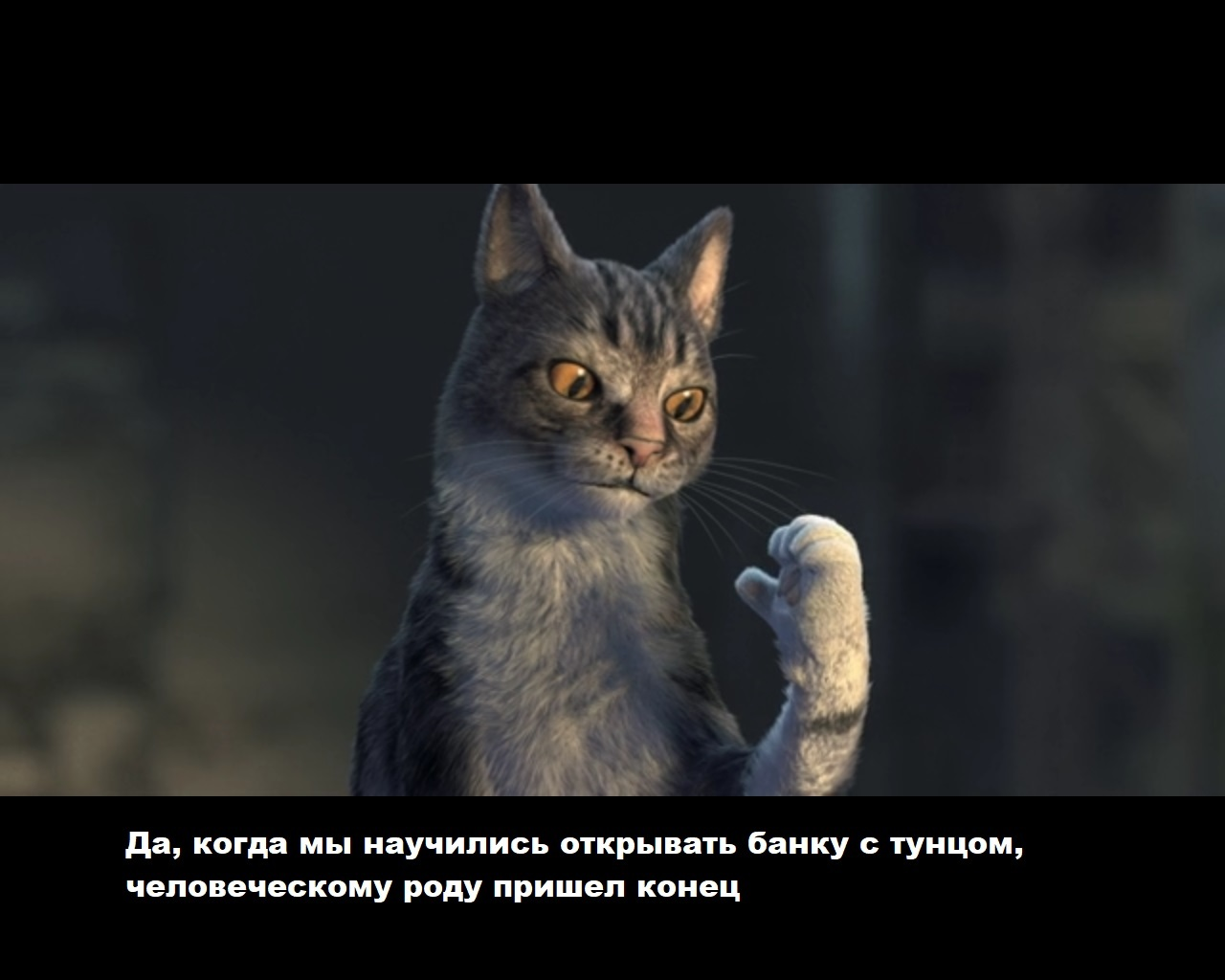 https://cs12.pikabu.ru/post_img/big/2020/01/03/8/157805981112830723.jpg