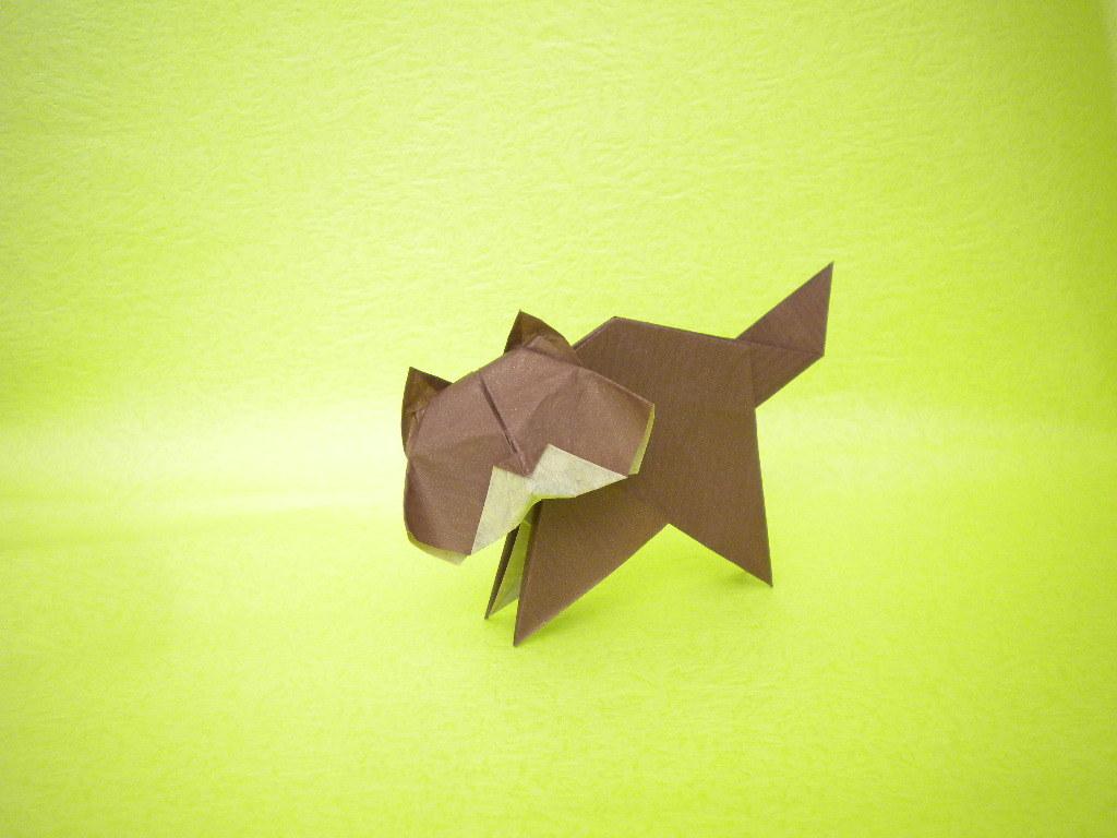 Обои Белка, Origami, бумага. Разное foto 16