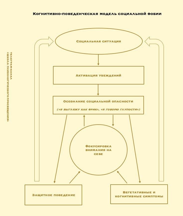 Когнитивная познавательная девушка модель социальной работы работа девушке моделью кадников
